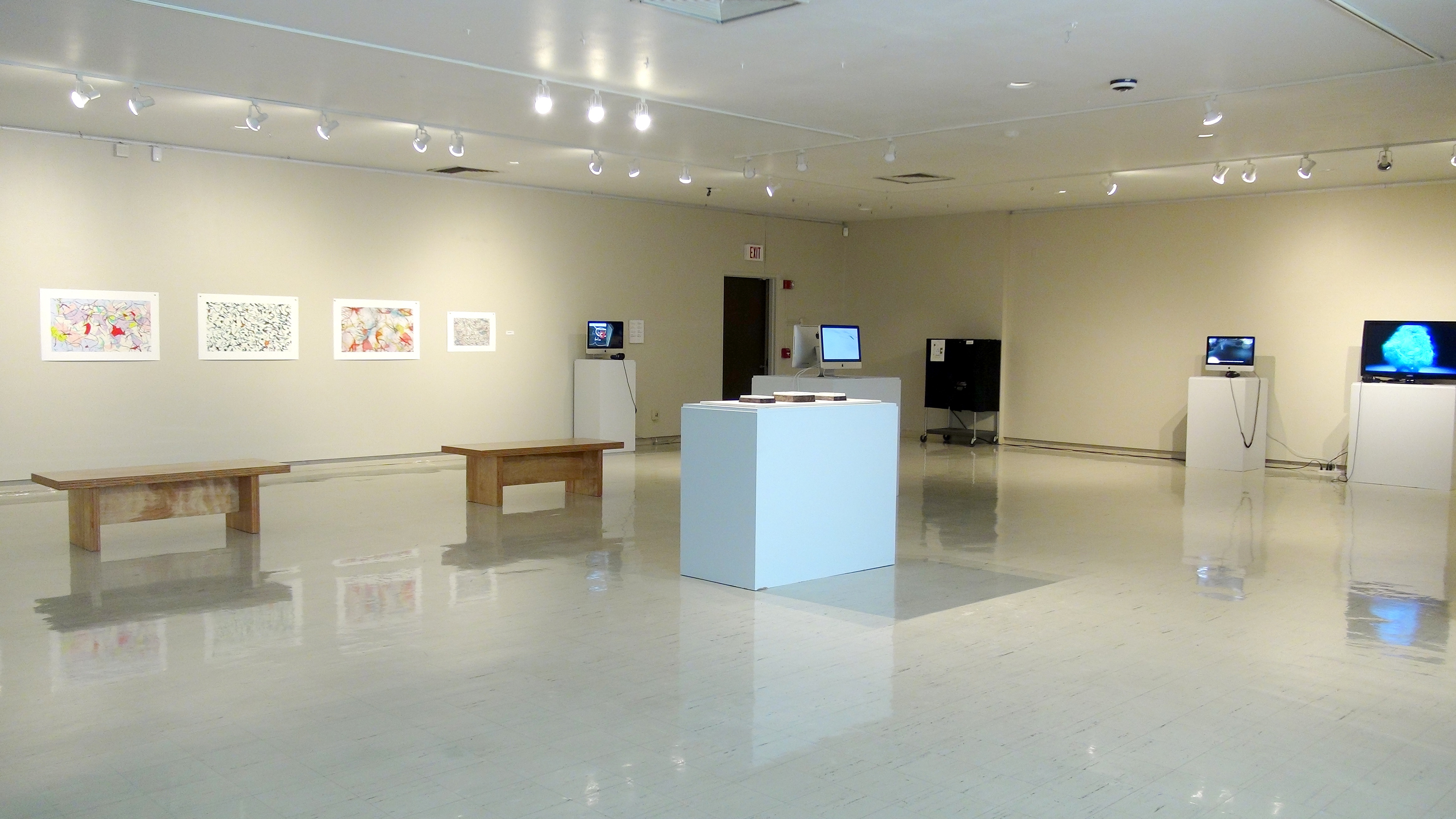 Installation View, The Body Electric